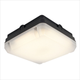 LED Square Bulkhead - Black - 14W - Emergency Back Up Detail Page