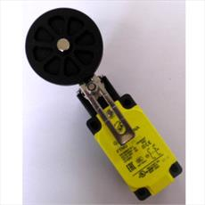 Adjustable Limit Switch 50mm Roller - Large Body - Slow Action Detail Page