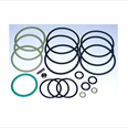 EV100 Seal Kit Size 1 1/2 Detail Page